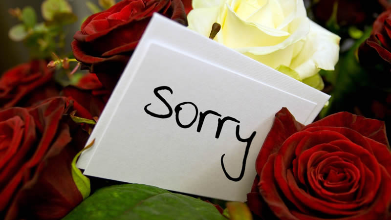 Apologies Save your Relationship